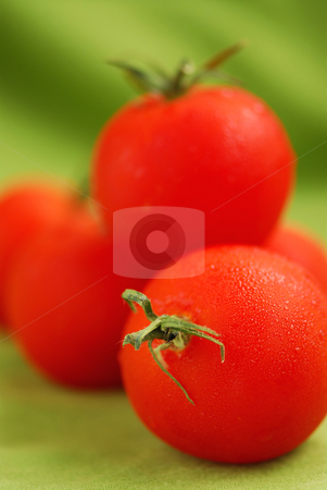 Tomatoes stock photo, Several fresh dewy tomatoes close up on green background by Elena Elisseeva