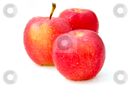 Red apples stock photo, Three red apples with water droplets on white background, focus on the middle apple by Elena Elisseeva