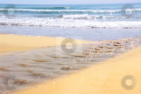 Ocean shore stock photo, Ocean shore with sandy beach and small tributary by Elena Elisseeva