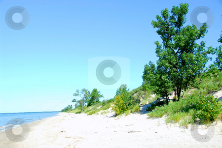 Sand dunes coastline stock photo, Coastline with sand dunes by Elena Elisseeva