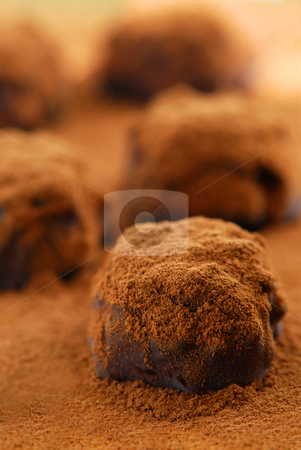 Chocolate truffles stock photo, Macro image of dark chocolate truffles sprinkled with cocoa powder by Elena Elisseeva