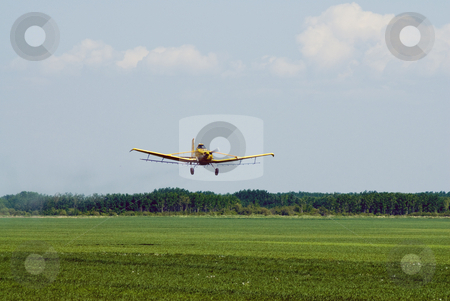 Landing plane stock photo, A small plane landing in a grassy field by Richard Nelson