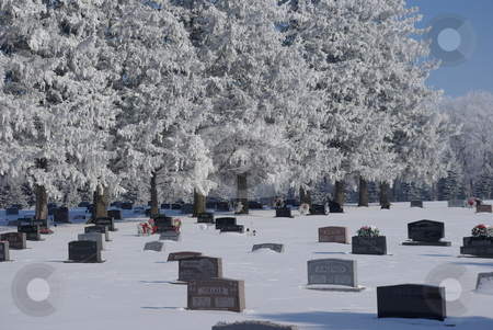 Frosty resting place stock photo, A wet winter December snow blankets trees and tombstones in a in a northeast Iowa rural cemetary (photo 12/17/2007). by Dennis Thomsen