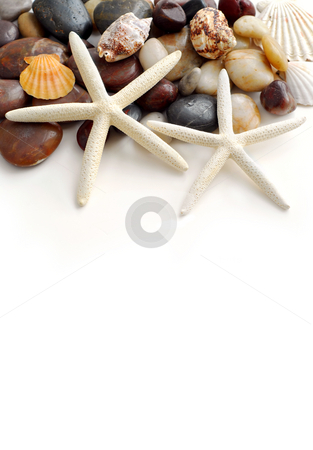 Tropical vacation stock photo, Starfish, pebbles and seashells on white background by Elena Elisseeva