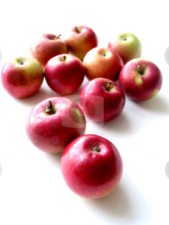 Apples 2 stock photo, Macintosh apples on white background by Elena Elisseeva