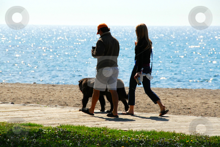 Morning walk stock photo, Couple talking a walk with their dog in the morning at beach by Elena Elisseeva