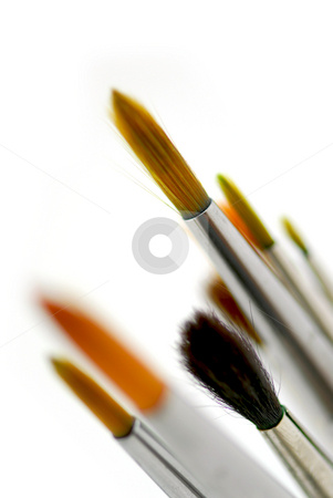Paintbrushes stock photo, Closeup of paintbrushes on white background by Elena Elisseeva