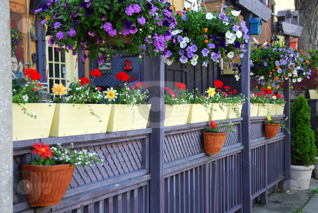 Restaurant patio stock photo, Colorful fence of a restaurant patio with flowers by Elena Elisseeva
