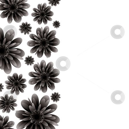 Floral banner black stock photo, Floral inspired border in black and white with copy space by Michael Travers