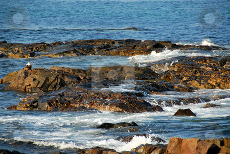Rocks in ocean stock photo, Waves crashing on the rocks near the Atlantic ocean coast in Maine, USA by Elena Elisseeva
