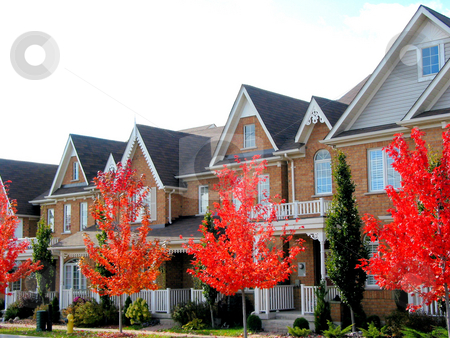 New Townhomes stock photo, Real estate: A row of new townhomes with bright red fall trees by Elena Elisseeva