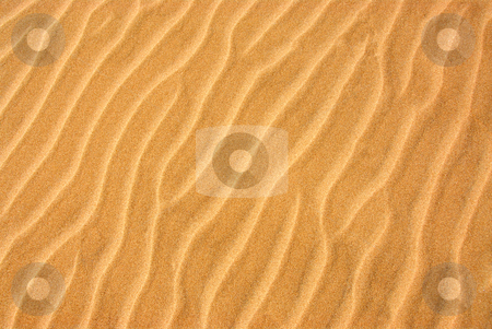 Sand background stock photo, Background of a beautiful pattern on a yellow sand by Elena Elisseeva