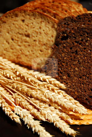Rye bread stock photo, Two types of rye bread with rye ears by Elena Elisseeva