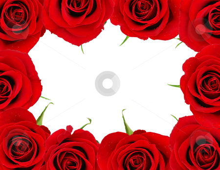 Red rose frame stock photo, Red roses frame with white space for copy for Valentine's day by Elena Elisseeva