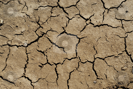 Dry soil background stock photo, Cracked soil  background by Elena Elisseeva