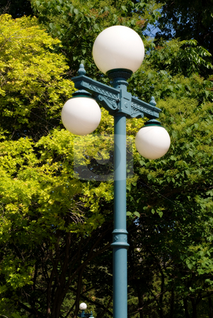 Light Post stock photo, A light post with three lights on it shot against a green tree by Richard Nelson