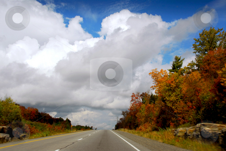 Fall highway stock photo, Divided highway in the fall, some motion blur on the sides by Elena Elisseeva