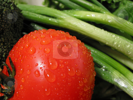 Fresh vegetables  stock photo, Fresh vegetables with water droplets, closeup on tomato by Elena Elisseeva