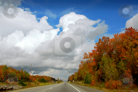 Fall highway stock photo, Divided highway in the fall by Elena Elisseeva