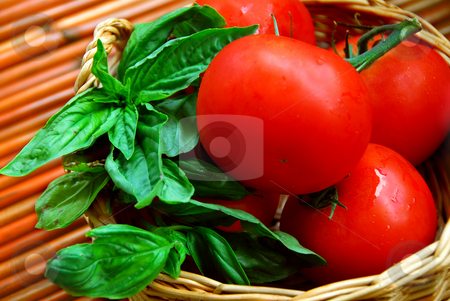 Tomatoes and basil stock photo, Fresh tomatoes and green basil in a basket by Elena Elisseeva