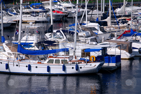 Yachts in a harbor stock photo, Rows of luxury yachts anchored in Boston harbor. Names and trademark are revomed. by Elena Elisseeva