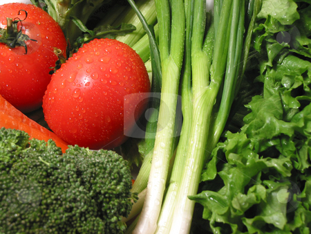 Fresh wet vegetables stock photo, Fresh vegetables with water droplets by Elena Elisseeva