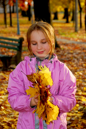 Autumn girl stock photo, Portrait of a young girl holding autumn leaves by Elena Elisseeva