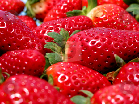 Strawberries macro stock photo, Bright red strawberries, closeup by Elena Elisseeva