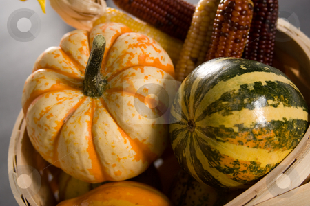 Autumn harvest stock photo, Close-up of pumpkins and other vegetables symbolizing fall harvest by Jose Wilson Araujo