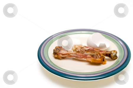 Which Came First? stock photo, Which came first, the chicken or the egg? by Robert Byron