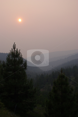 Forest Fire Sunset stock photo, Sun setting behind forest fire smoke in the California Sierra's by Lynn Bendickson