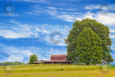 Old Barn stock photo, Agriculture History - An old abandoned barn. by Robert Byron