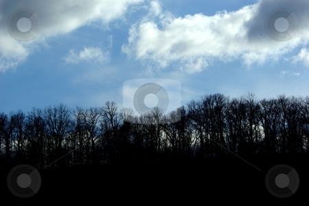 Cloudy contrast stock photo, A treeline on a ridge overlooking Elkader, Iowa provides a sharp contrast with the blue sky and threatening clouds on a spring day. by Dennis Thomsen