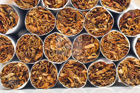 Cigarettes stock photo, Stacks of cigarettes being readied for packaging. by Robert Byron