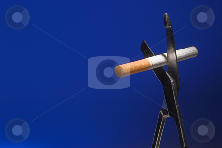 Quit Smoking stock photo, Cutting a cigarette. The concept of quitting smoking. by Robert Byron