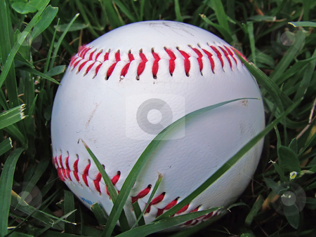 Baseball in the grass stock photo, Baseball that has landed in the grass by Michelle Bergkamp