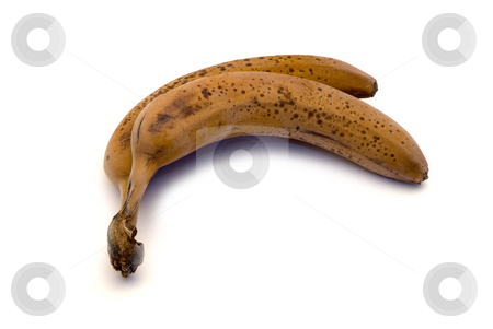 Frozen Bananas stock photo, Two frozen brown bananas isolated on a white background by Richard Nelson
