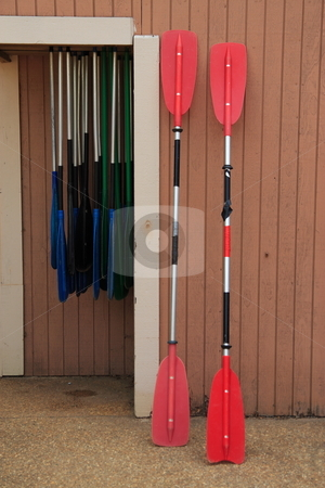 Oars stock photo, Canoe kayak oars by Jack Schiffer