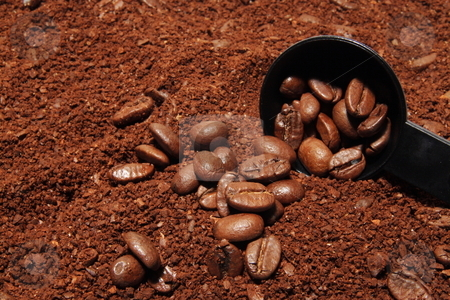 Coffee stock photo, Mixture of ground and whole coffee bean with measuring cup by Jack Schiffer