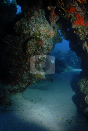 Underwater Arch stock photo, A coral reef arch formation making a swimthrough cave on the floor of the ocean by A Cotton Photo