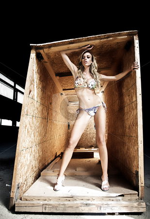 Female model in wood crate stock photo, Female model posing in a wooden crate by Luca Mosconi
