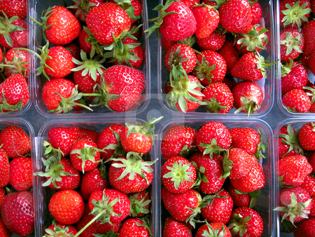 Close up of strawberry punnets. stock photo, Close up of strawberry punnets. by Stephen Rees