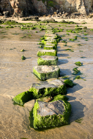 Stepping stones across a stream. stock photo, Stepping stones across a stream. by Stephen Rees