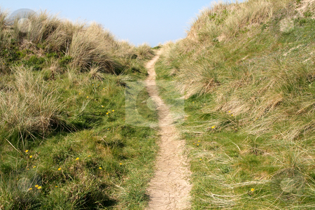 A path to the beach in Perranporth, Cornwall, UK. stock photo, A path to the beach in Perranporth, Cornwall, UK. by Stephen Rees