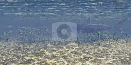 Under Water scene stock photo, Under water scene. 3D image with shark and school of fish. by John Teeter
