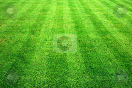 Bowling green grass background. stock photo, Bowling green grass background. by Stephen Rees