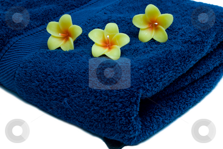 Three Candles stock photo, Three flower candles resting on a blue towel, isolated on a white background by Richard Nelson