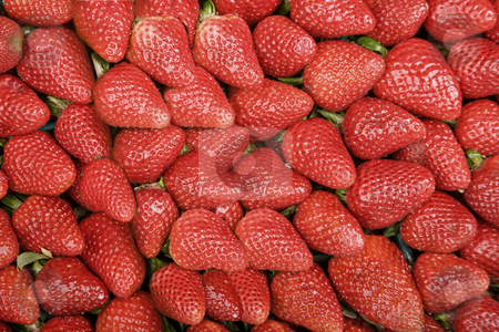 Bright Red Strawberries stock photo, Bright Red Strawberries Filling the Entire Frame by Scott Griessel