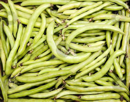 Fava Beans stock photo, Crisp Green Fava Beans Filling the Frame by Scott Griessel