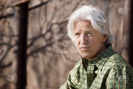 Handsome Man stock photo, Handsome man with gray hair and a green shirt by Scott Griessel